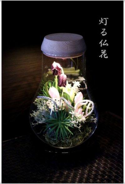 画像1: 送料無料【灯る仏花】蓮の庭